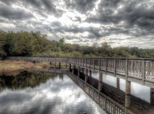 Cloudy day at White Lake in Cullinan Park in Houston. Texas - HDR