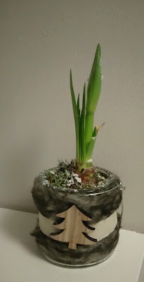 plante, pot scandinave, hiver, bullelodie