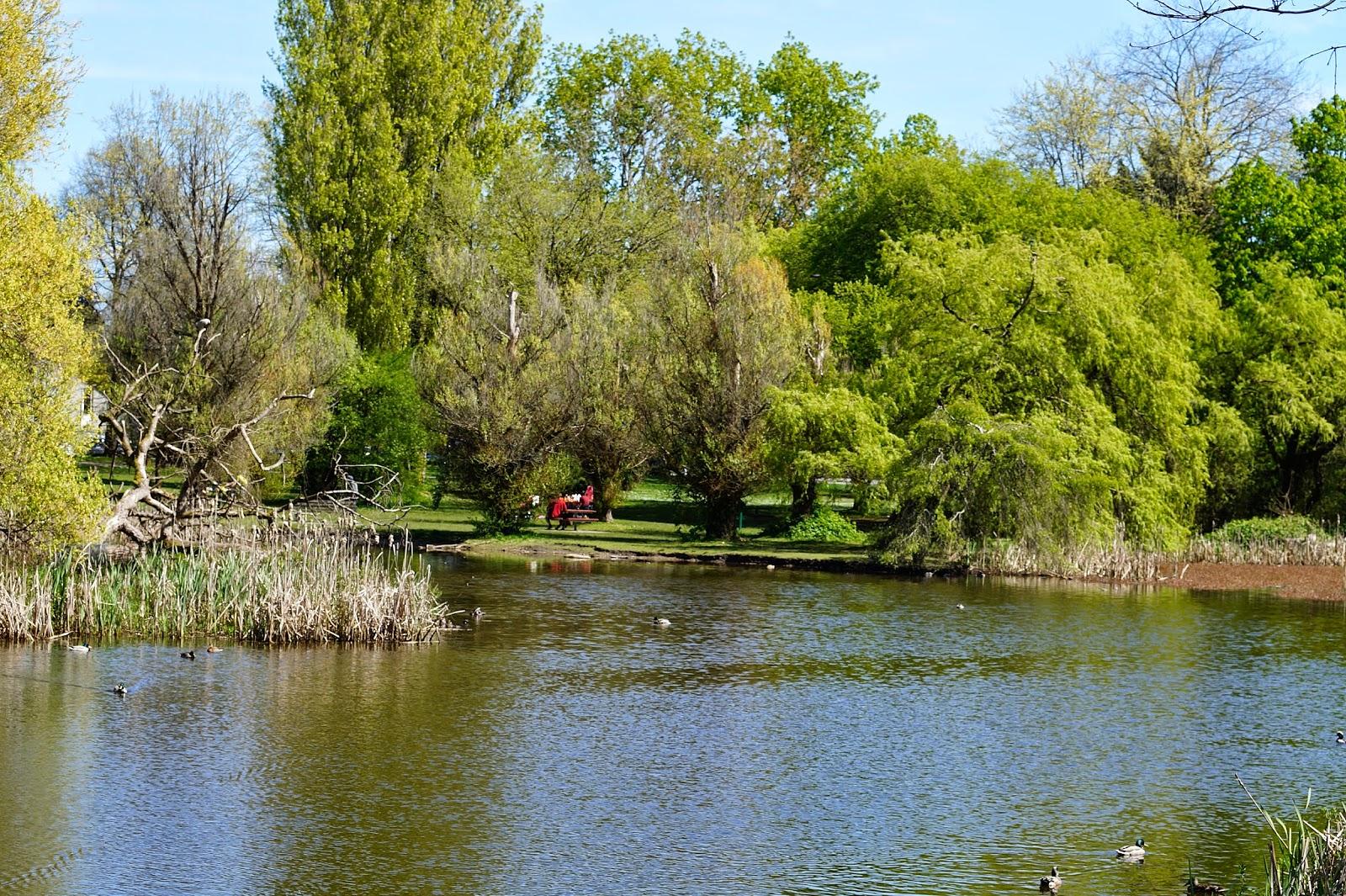 Пруд в парке Jericho