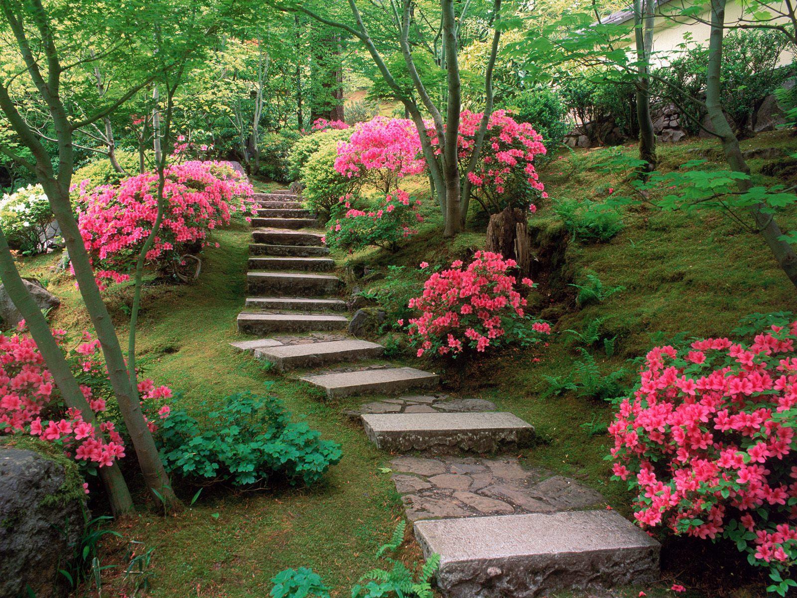 http://3.bp.blogspot.com/-gNKhP4Y3mKM/T03-JZbYnUI/AAAAAAAAAGA/mWThqQVYVps/s1600/azaleas_japanese_garden-normal.jpg