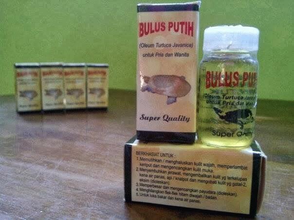minyak+bulus Bahan Bahan Yang Digunakan Untuk Pemulihan Urat Saraf Dalam Rawatan Urut Tradisional