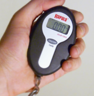 Rapala Mini Fishing Scale