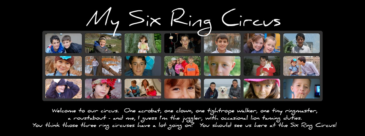 My Six Ring Circus