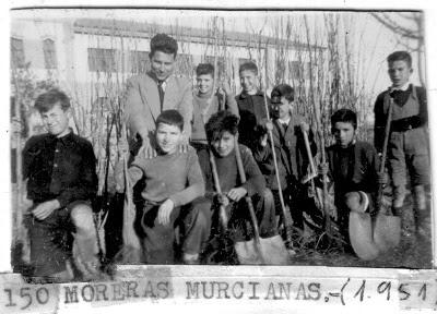 http://www.lafiestadelarbol.blogspot.com.es/