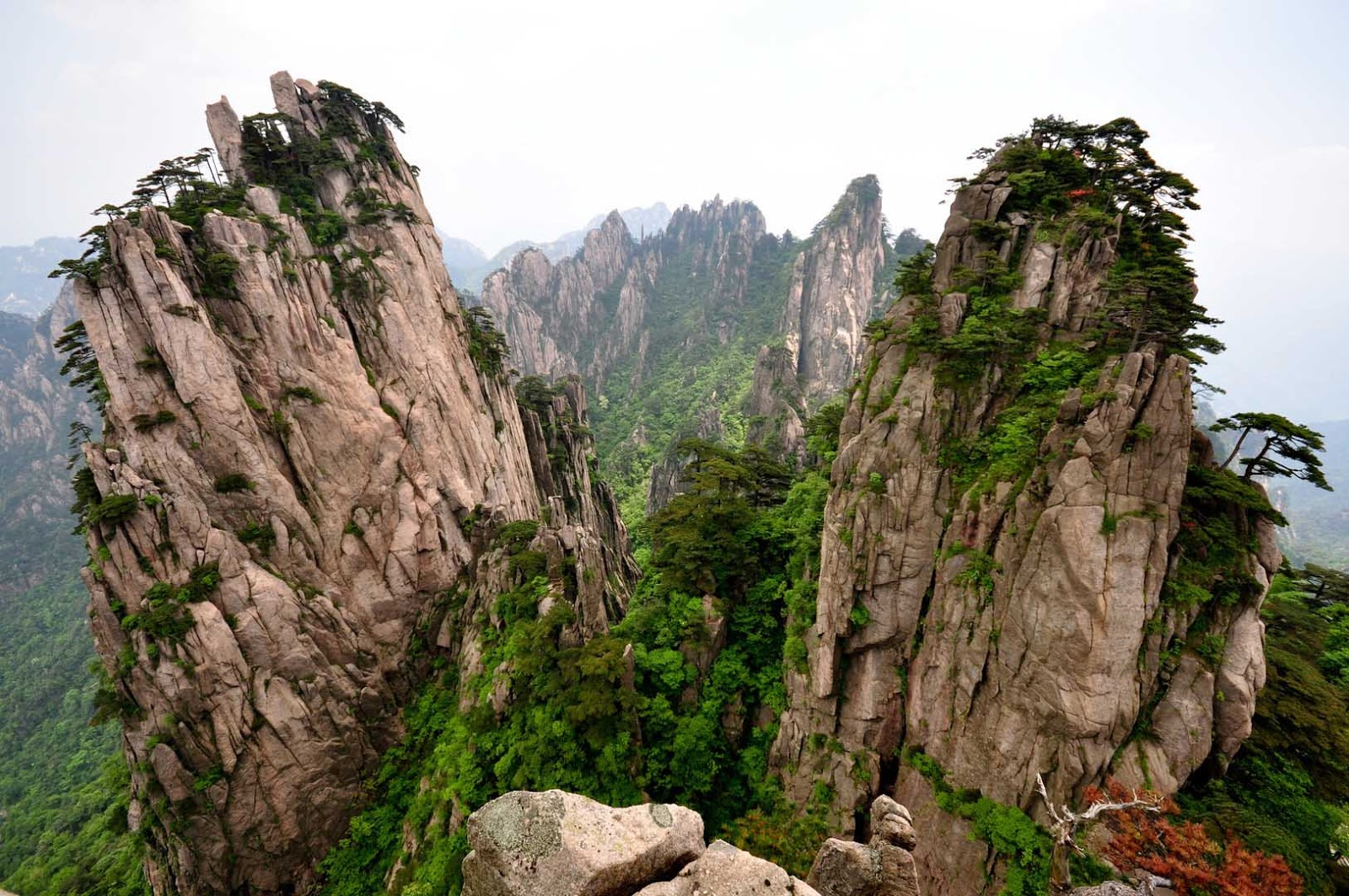 Huangshan China  city photos gallery : Zé Viagem: Parque das Montanhas Huangshan China