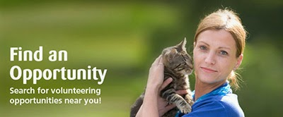 Search for volunteering opportunities near you