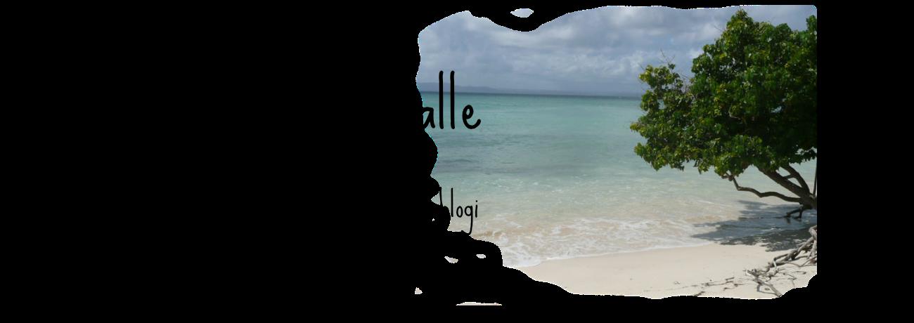 Pieniä polkuja maailmalle -matkablogi