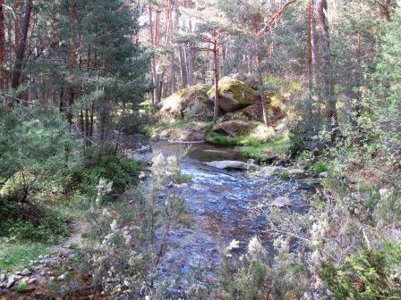- Ruta por las pesquerías Reales (Segovia). IMG_4245