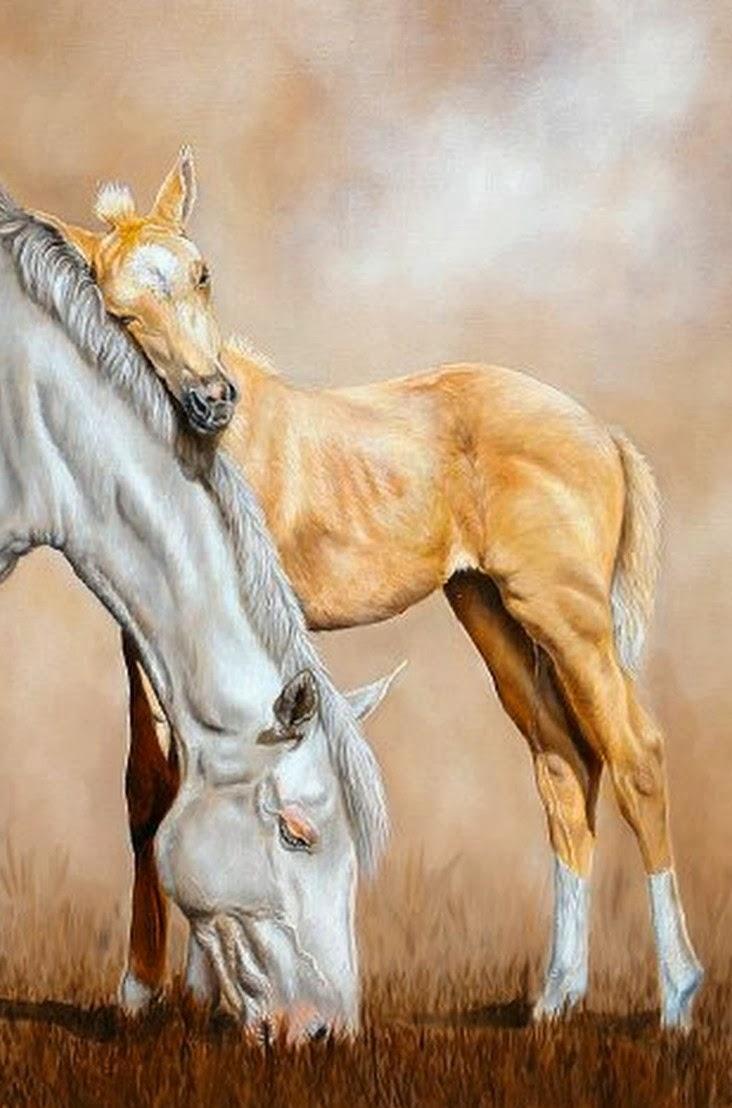 cuadro-de-caballo
