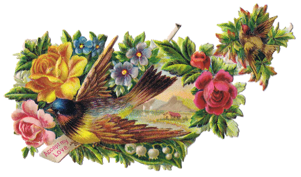 birds and floral - vintage clip