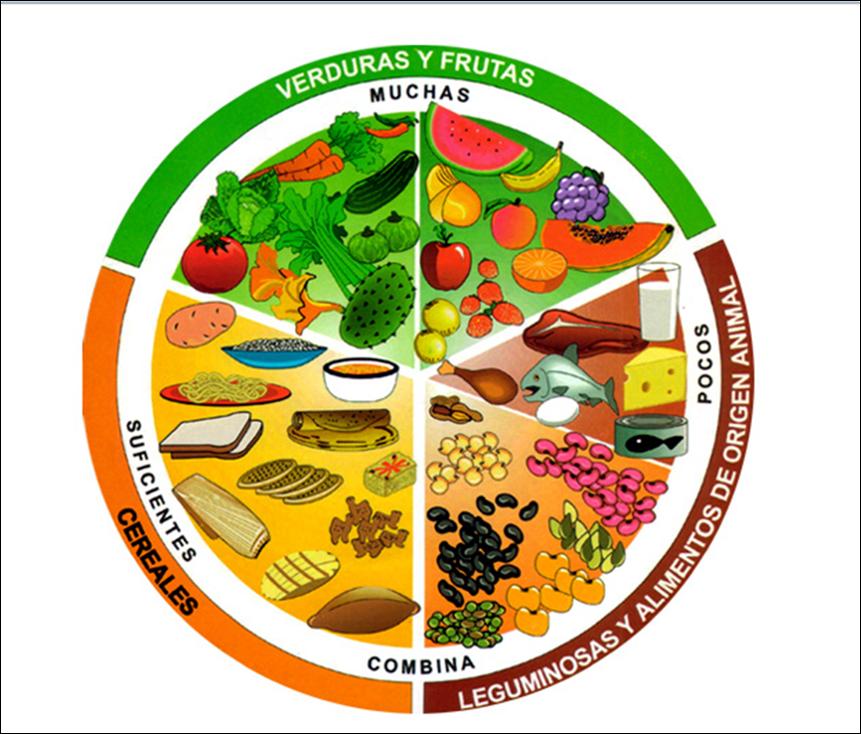 El grupo verde nos aporta nutrimentos inorgánicos, comúnmente