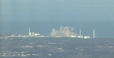 Japan earthquake caused Fukushima nuclear power plant explosion