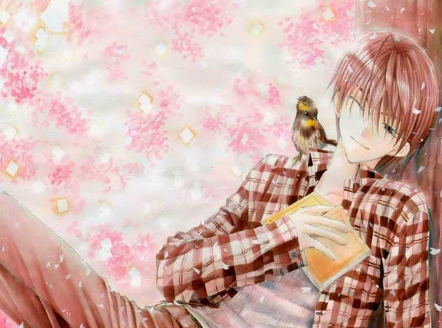 Cool Anime Boy Wallpapers Collection ~ Charming collection of Photos