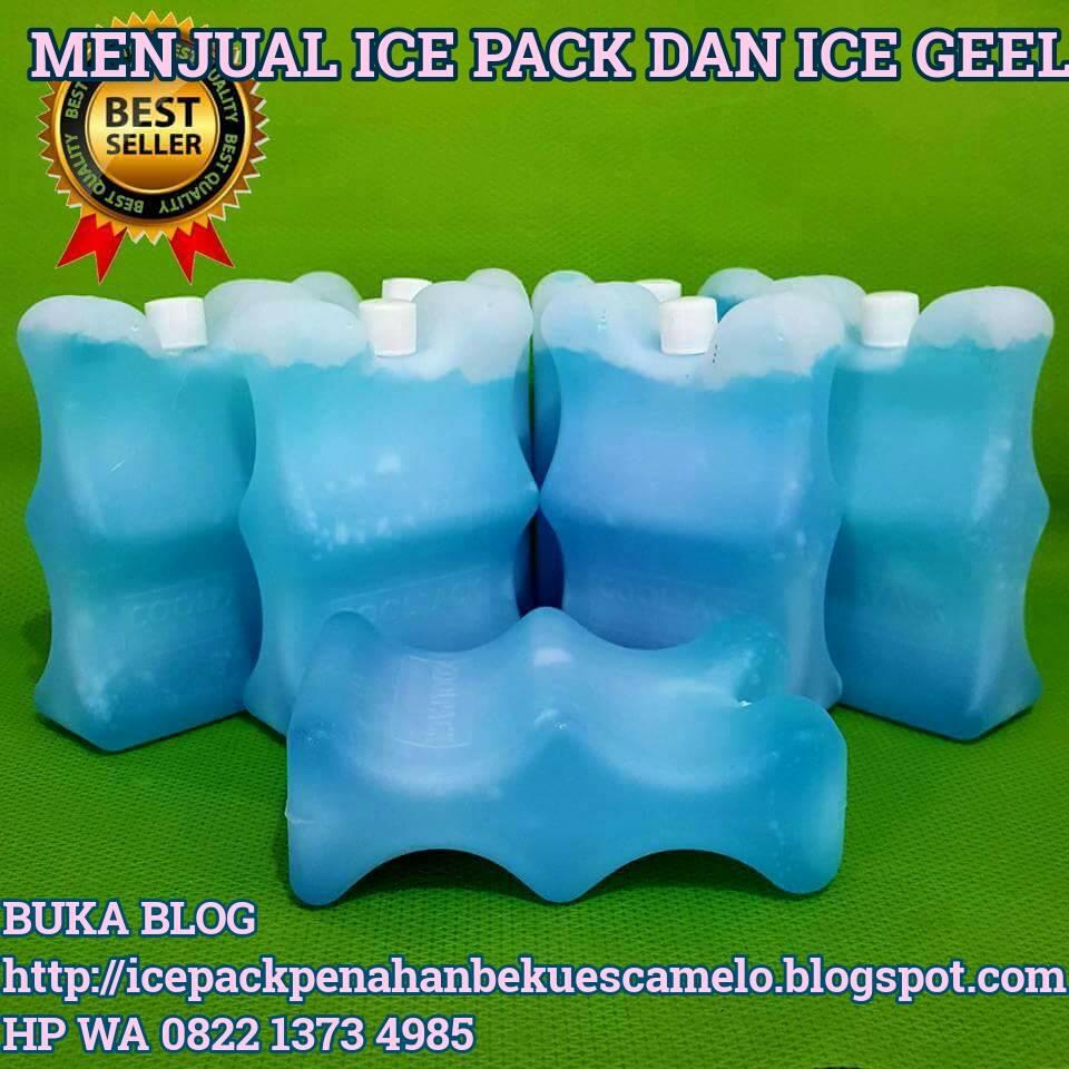 ICE PACK MENAHAN BEKU ES CAMELO BISA BEKU ES CAMELO DI BOK  TERMOS  10 JAM