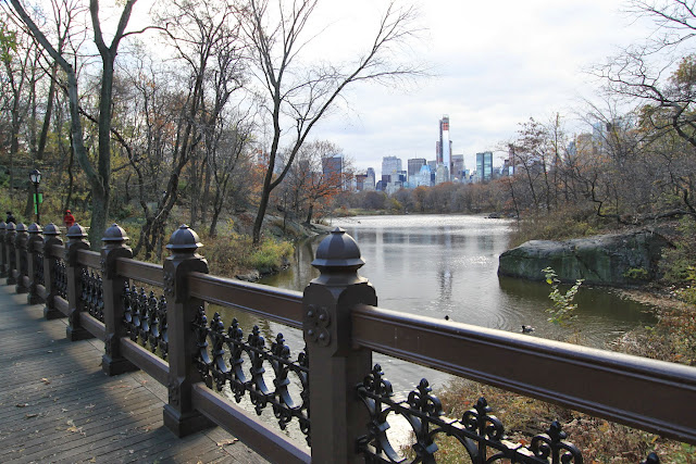 Walking on the bridge of Central Park in Manhattan, New York, USA