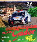 II Rally-Crono Villa de Gador