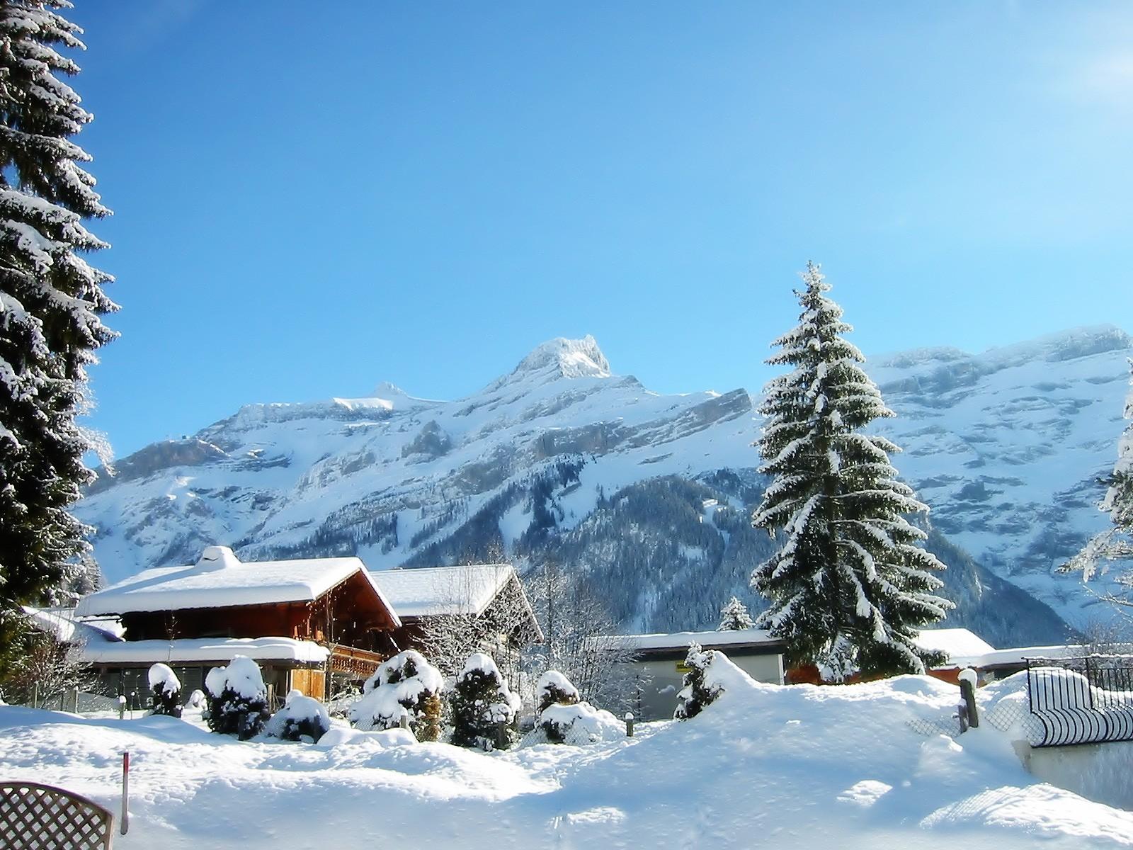 http://3.bp.blogspot.com/-gPvmugQ9gkM/TkdLBtdUySI/AAAAAAAAAFg/KY_XSoP0Low/s1600/winter_holiday_desktop_wallpaper_49578.jpg