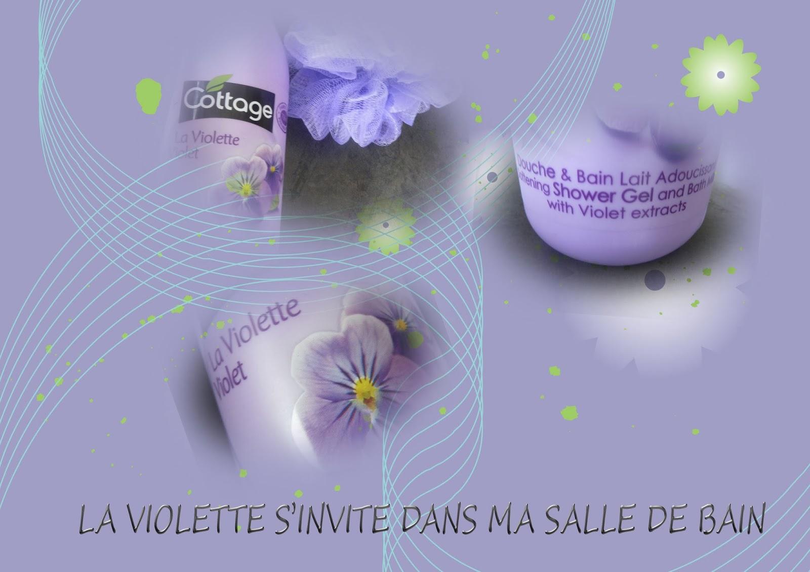 La violette s 39 invite dans ma salle de bain lesenviesdetalie for Odeur d egout dans ma salle de bain