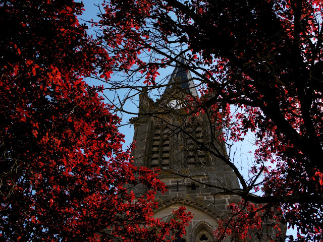 Mirecourt, capitale française de la lutherie