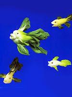 Фигурки на риби от китайско зеле