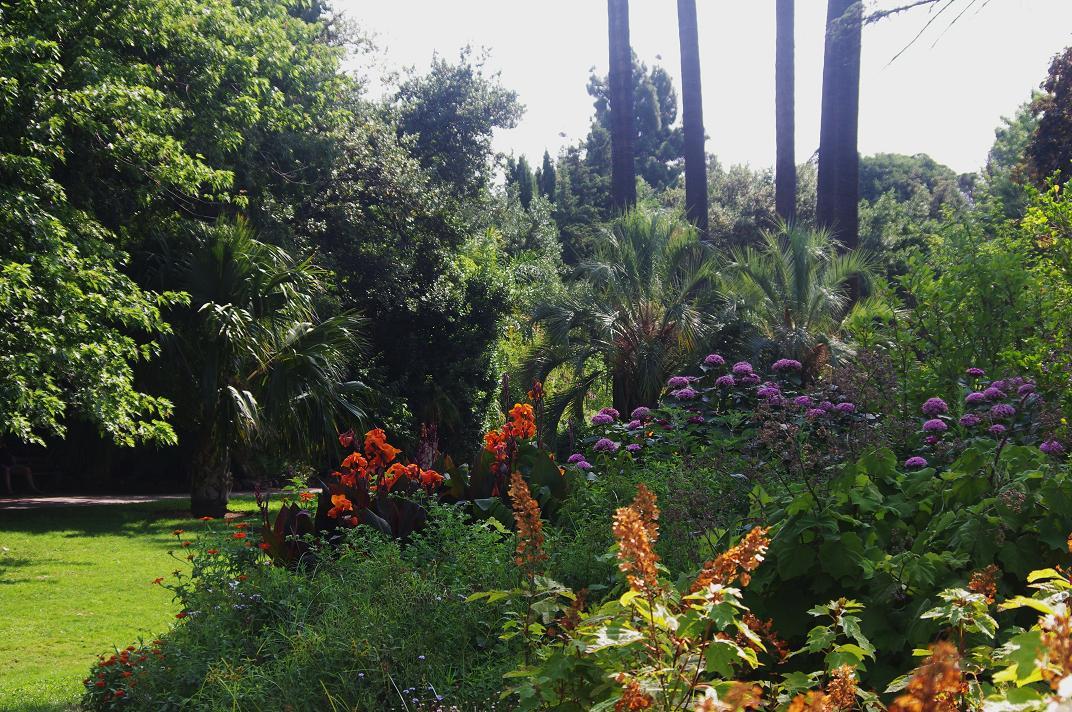 Le jardin des couronnes suite de la visite du jardin for Jardin olbius riquier