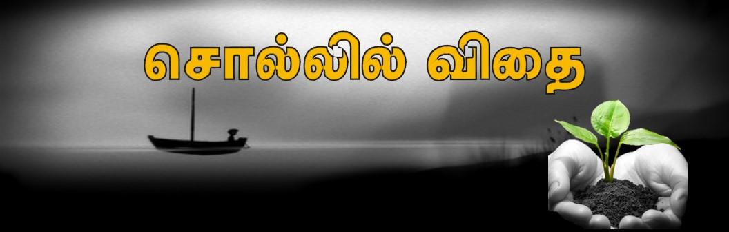 சொல்லில் விதை