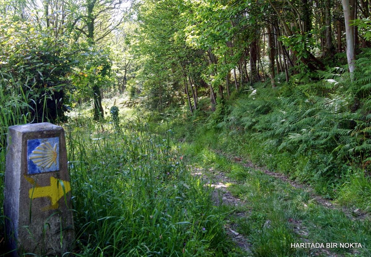 asturias pilgrim route
