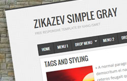 zikazev simple gray