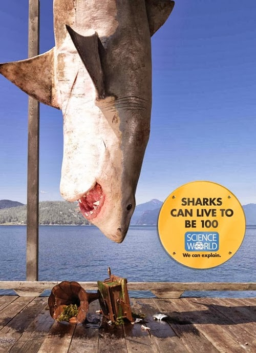14-Shark-Science-World-Museum-Rethink-Canada-Billboard-Campaign-www-designstack-co