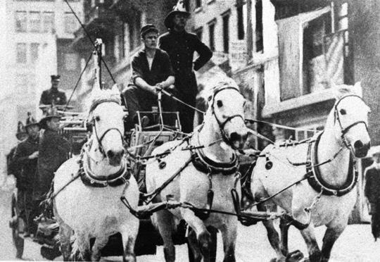 Larry (Lawrence) Kreger-FDNY Ladder 7 from back whn they had a dalmatian to help rouse the horses