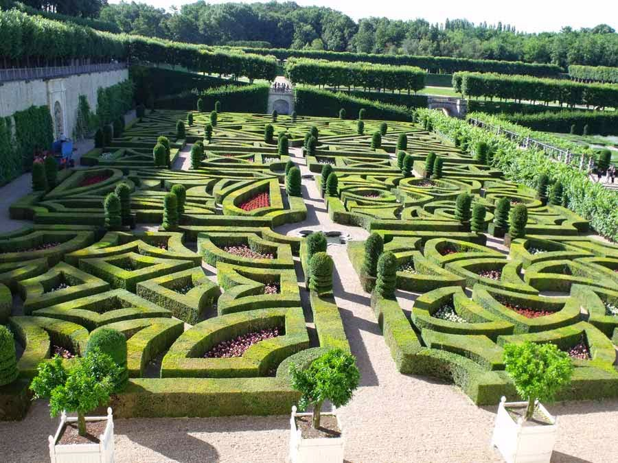 Como arreglar mi jardin con poco dinero finest with - Como arreglar mi jardin ...