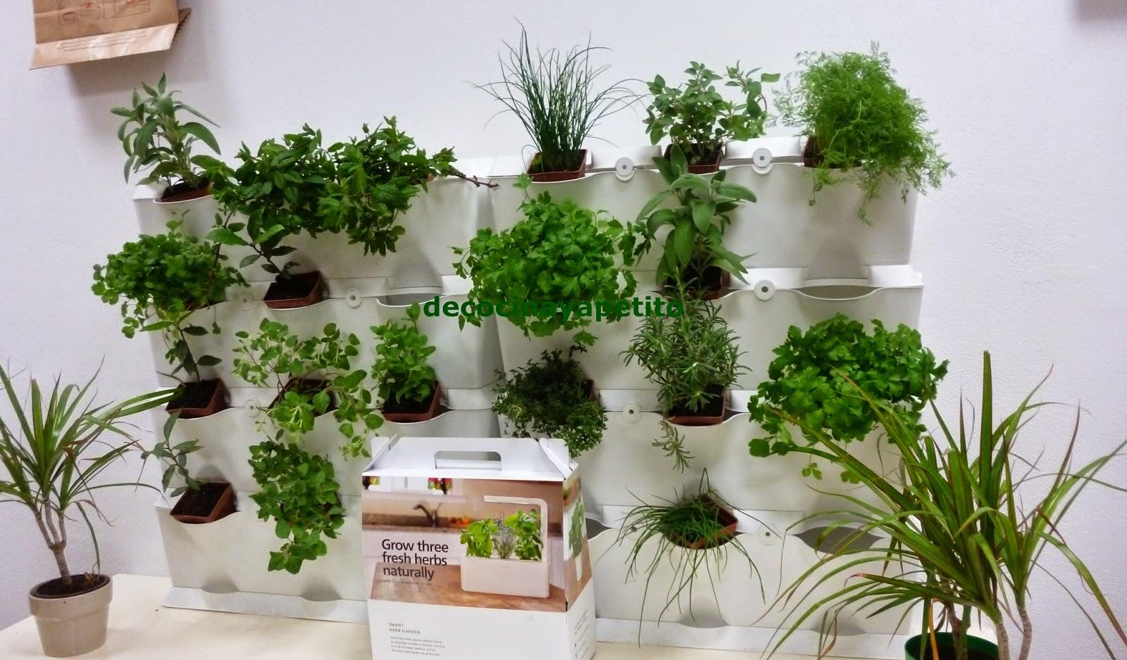 Plantas Aromaticas En La Cocina | Cocinando Con Vicky Recetas De Cocina Jardin Vertical De Plantas