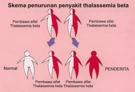 Obat Untuk Penyakit Thalasemia