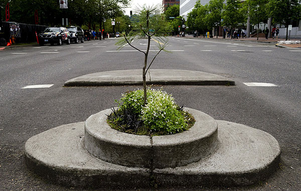 [Image: smallest_park_in_the_world_02.jpg]