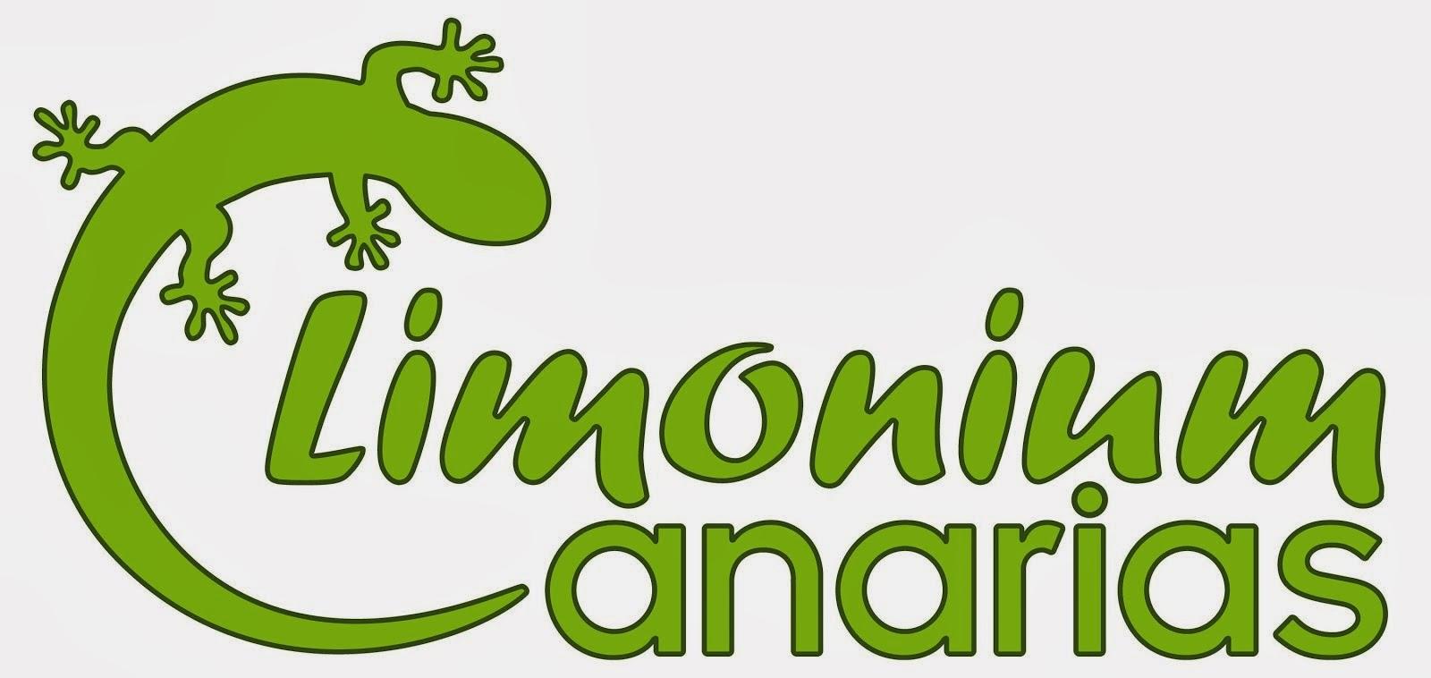 Limonium Canarias