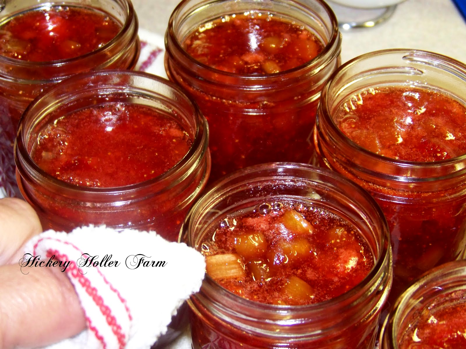 Hickery Holler Farm: Strawberry Rhubarb Jam