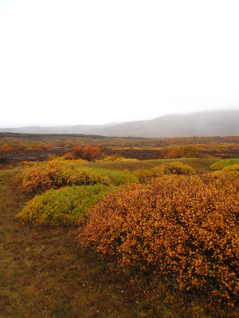 Scenery on The Golden Circle in Iceland.
