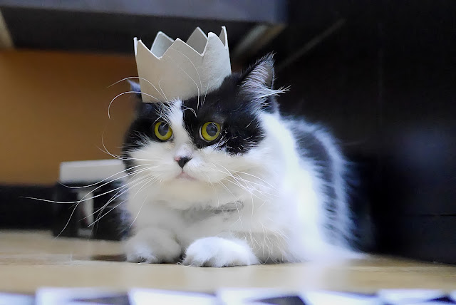 Bow down to your king by travel oriented from flickr (CC-SA)