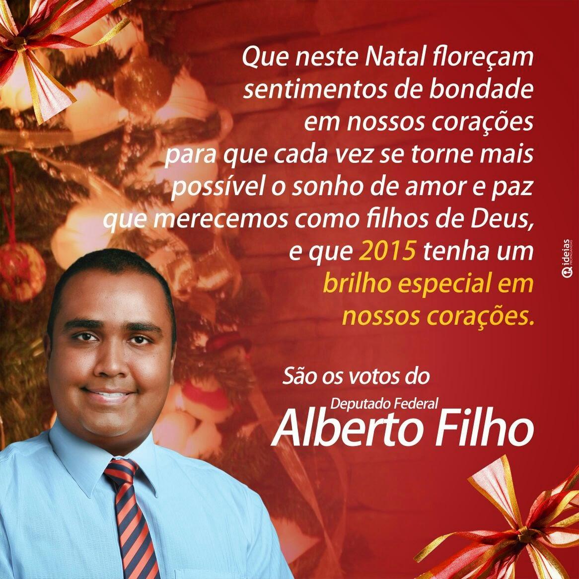 Deputado Federal Alberto Filho