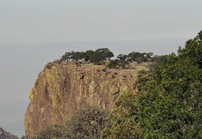 South Rim, Big Bend, Chisos Range