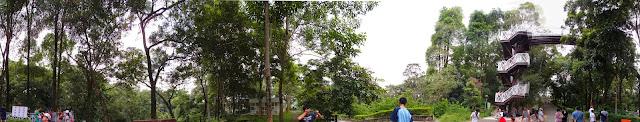 嘉義縣竹崎鄉親水公園萬竹博覽館-全新景點花仙子-天空步道啟用-千禧橋-弘景橋
