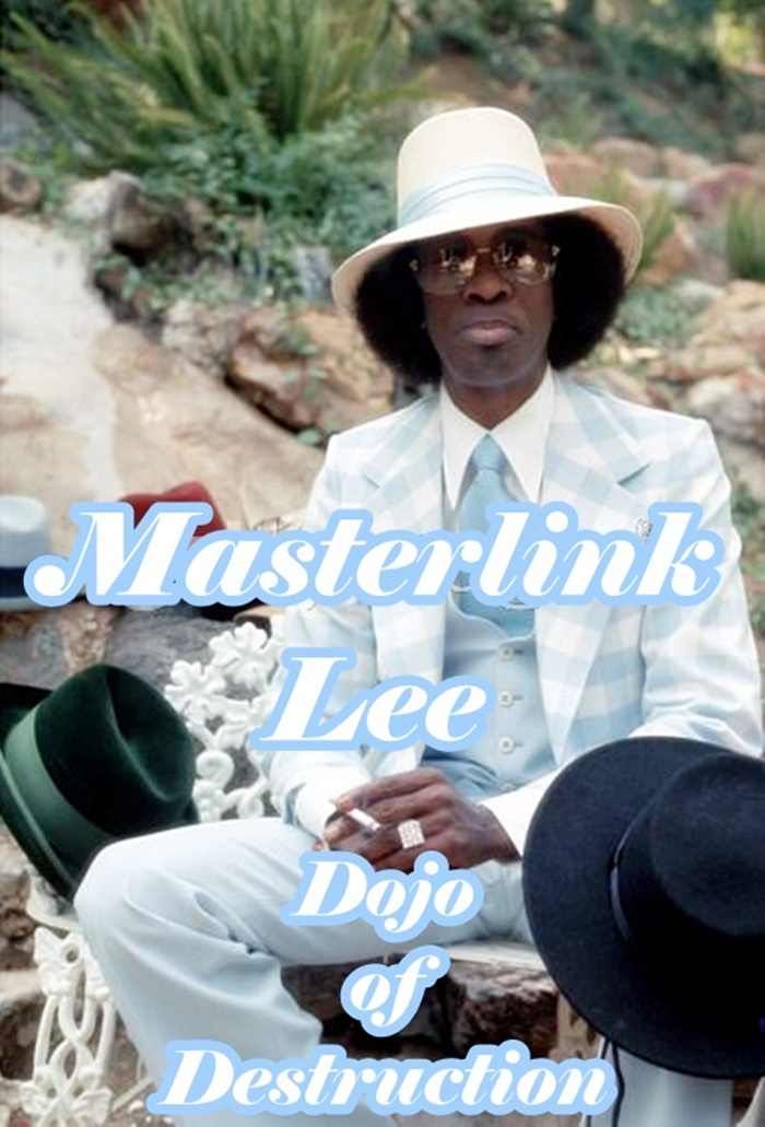Masterlink Lee's Dojo of Destruction