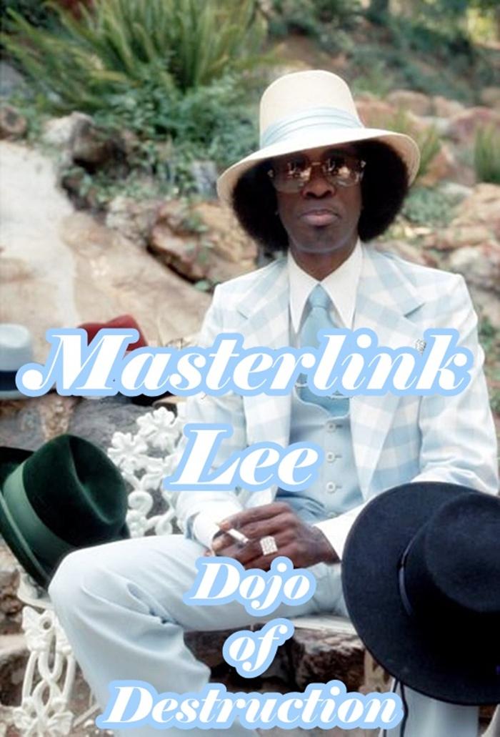 Masterlink Lee's Dojo of Destruction