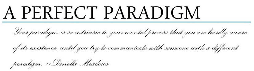 A PERFECT PARADIGM