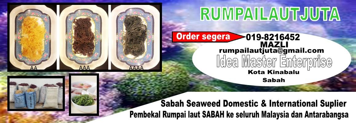 Pembekal Rumpai Laut Kolagen Sabah (Sabah Seaweed Suplier)