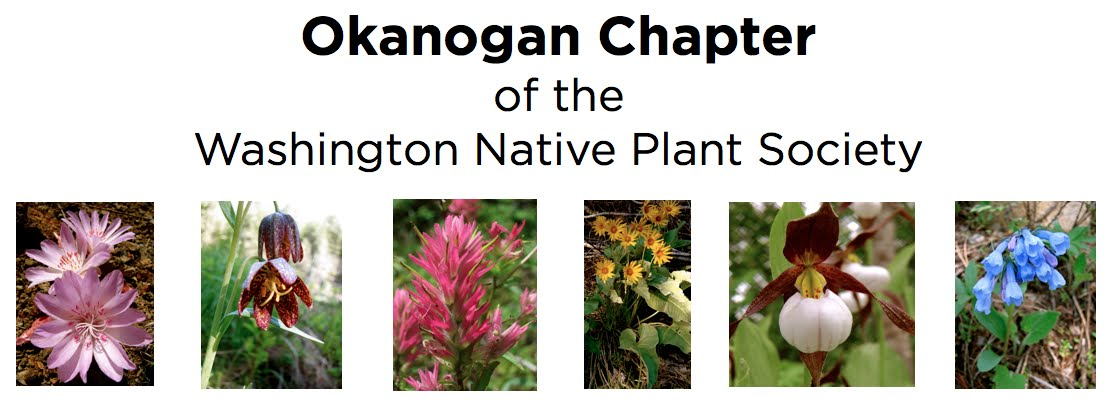 Okanogan Native Plants
