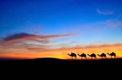 "Photo courtesy of FreeDigitalPhotos.net ""Camel Caravan In Desert"" by Photokanok"