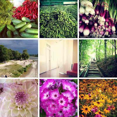 farmers' market, flowers, light, yellow, pink, purple, thunderstorm,