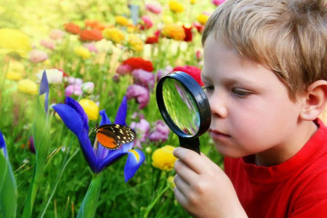 Berkebun memancing rasa ingin tahu anak