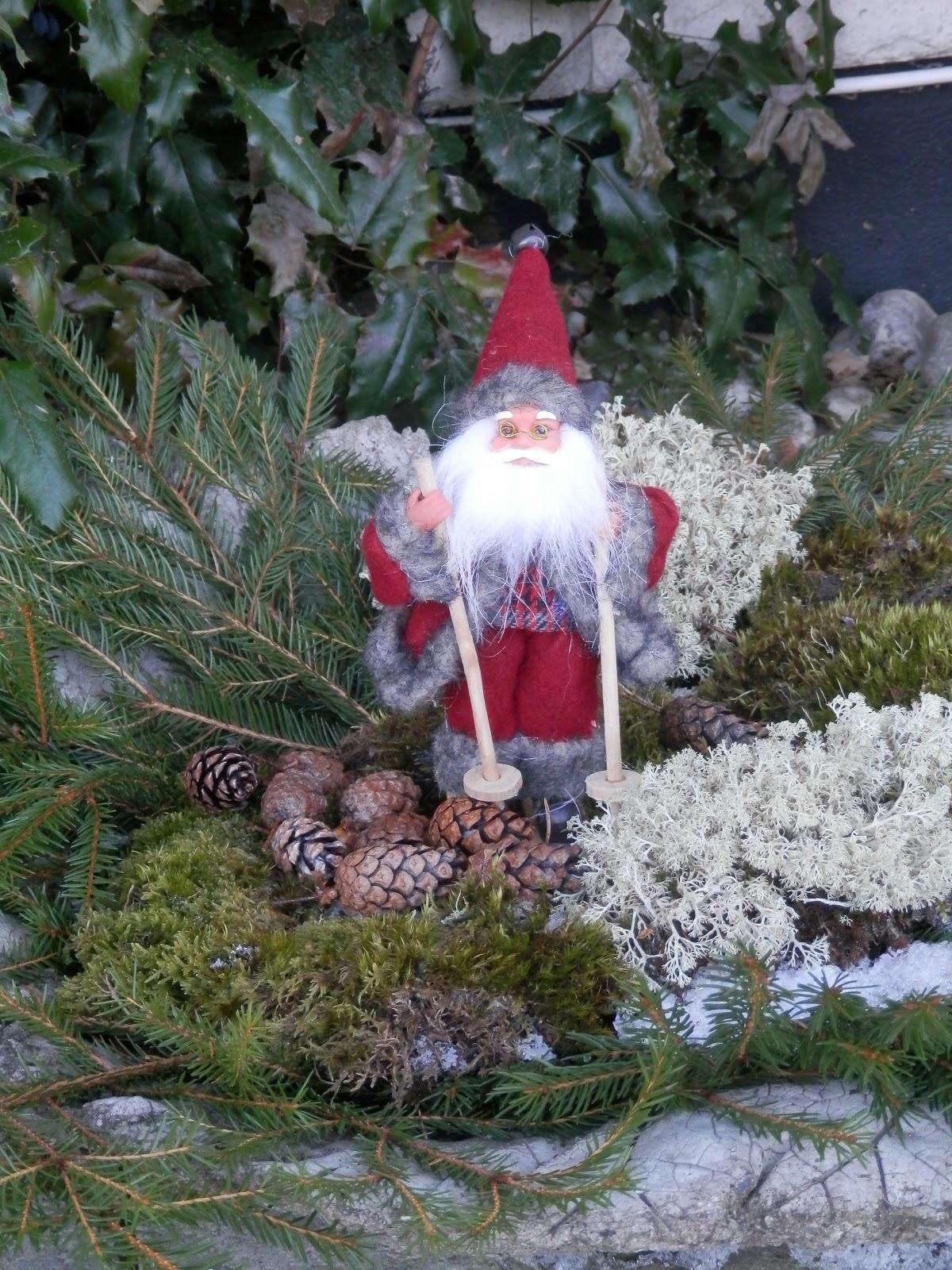 Talltitans trädgård: december 2012